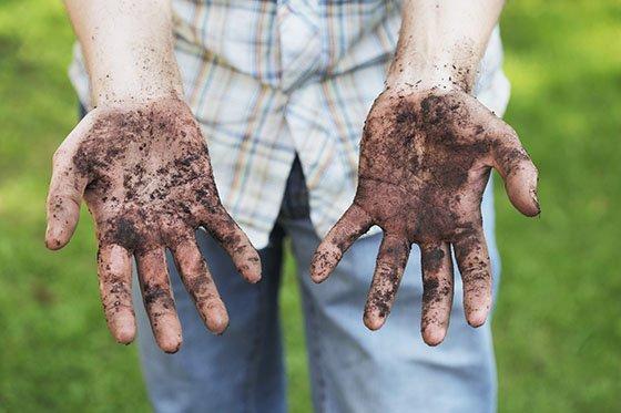 Немытые руки